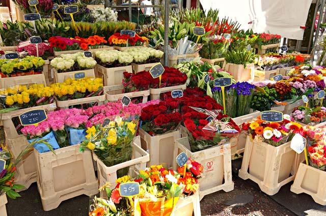 Tourist-Info-Het-Reestdal_CT_bekijkendoen_recreatie-vrije-tijd_winkelen-markten01