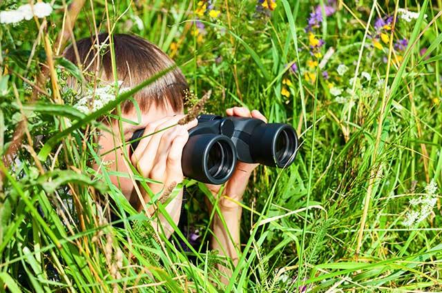 Tourist-Info-Punt-Het-Reestdal_CT_activiteit-kinderen-natuur-ontdekken