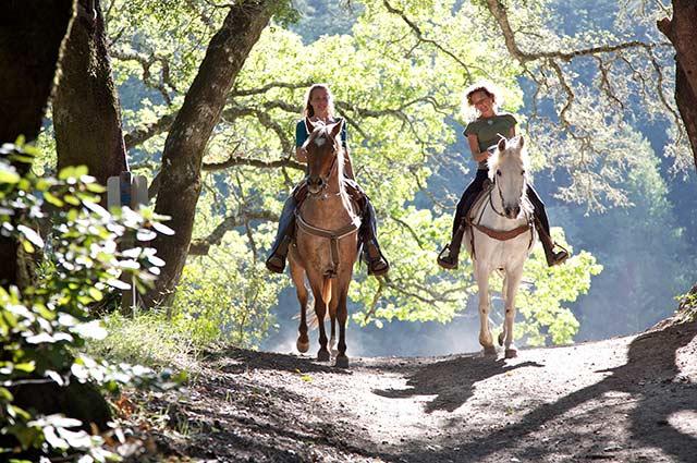 Paardrijden in het Reestdal