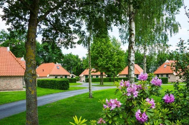 Tourist-Info-Punt-Het-Reestdal_CT_overnachten-vakantiewoningen-algemeen-01