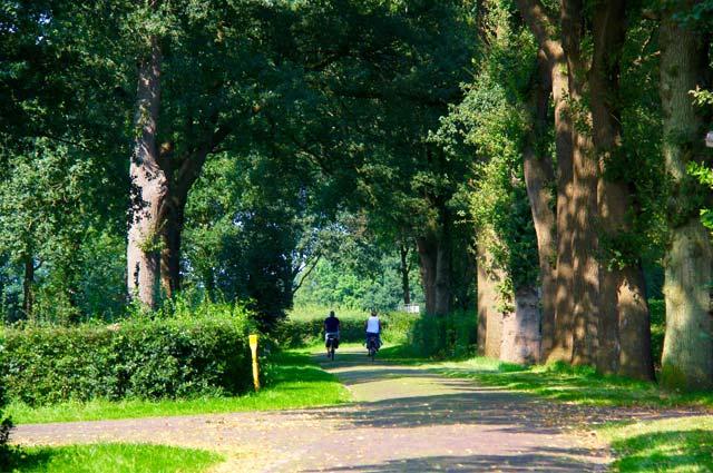 Tourist-Info-Punt-Het-Reestdal_CT_bekijken-doen_fietsen_fietsapp