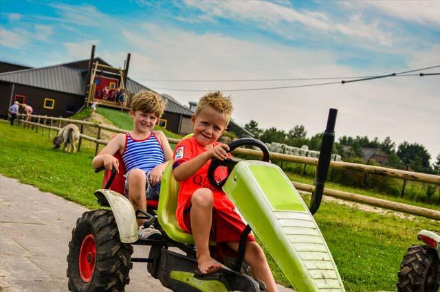 Tourist-Info-Het-Reestdal_CT_bekijkendoen_kinderen_leuke-activiteiten-speeltuin-Drentse-Koe-Ruinerwold-02