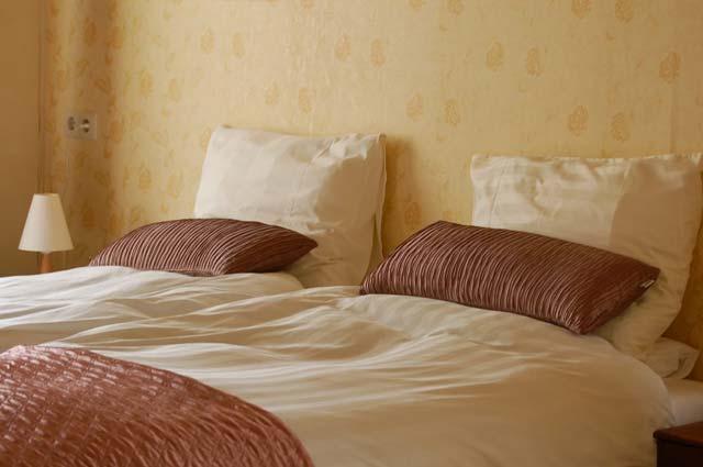 Tourist-Info-Punt-Het-Reestdal_CT_overnachten_bed-breakfast_Landgoed-Welgelegen-stookhuisje
