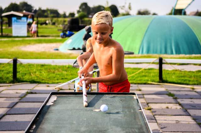 Tourist-Info-Het-Reestdal_CT_bekijkendoen_recreatie-vrije-tijd_actief-sportief_overige-balsporten_boerenbiljart-Drentse-Koe-Ruinerwold