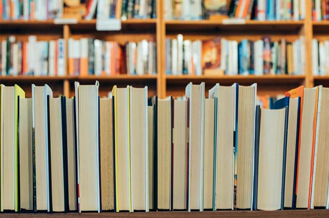 Tourist-Info-Punt-Het-Reestdal_praktische-info_internet-mogelijkheden_bibliotheek-Balkbrug