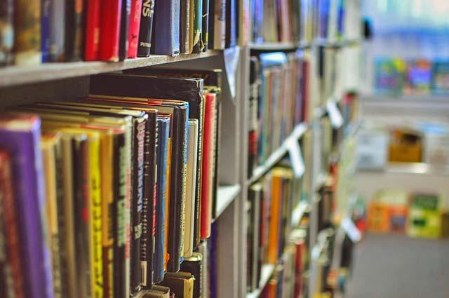Tourist-Info-Punt-Het-Reestdal_praktische-info_internet-mogelijkheden_bibliotheek-Nieuwleusen