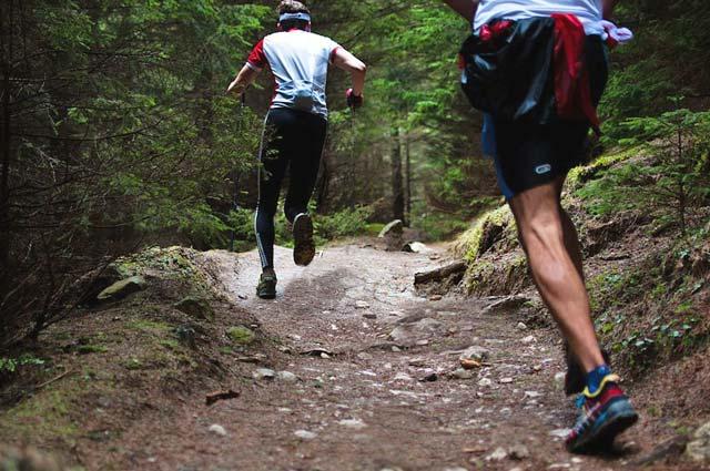 Tourist-Info-Het-Reestdal_CT_bekijkendoen_recreatie-vrije-tijd_trail-running