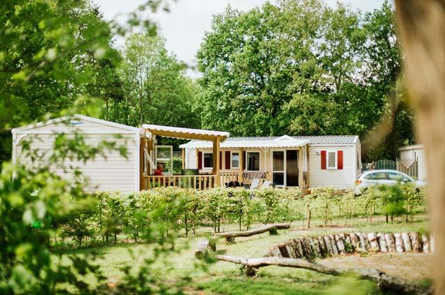 Tourist-Info-Het-Reestdal_CT_overnachten_campings_Si-Es-An-Balkbrug-chalet