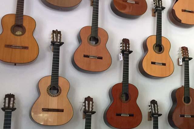 fellowsip of accoustics gitaren