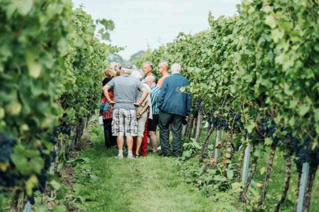 wijnfeest reestlandhoeve