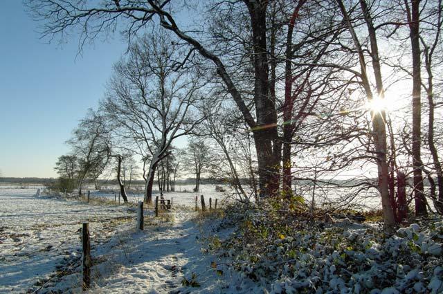 Sneeuw in het Reestdal