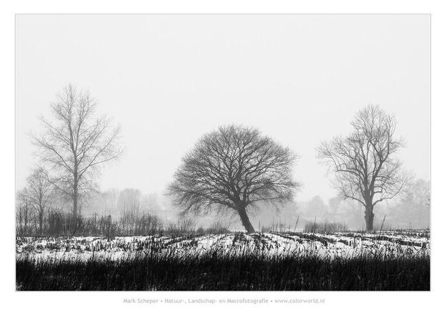 Winter Reest 05