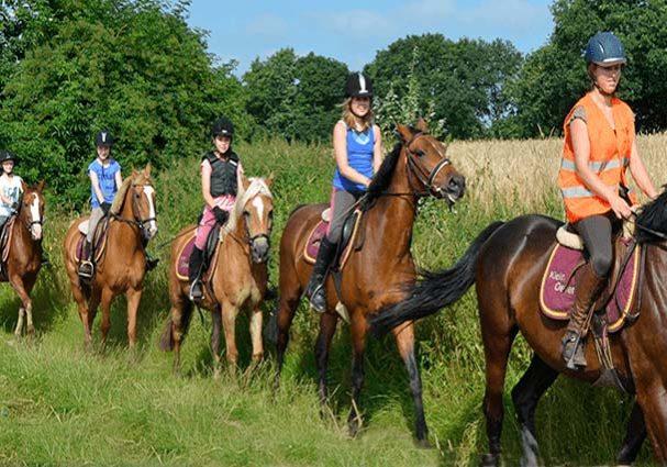 Tourist-Info-Het-Reestdal_CT_bekijkendoen_recreatie-vrije-tijd_paardensport_buitenritten_manege-Klein-Oever-accommodatie-Balkbrug