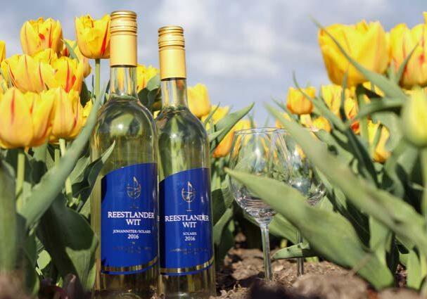 Tourist-Info-Het-Reestdal_CT_eten-drinken_streekproducten_wijngoed-Reestlandhoeve-witte-wijn-solaris-johanniter-Balkbrug-