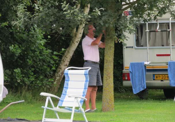 Tourist-Info-Het-Reestdal_CT_overnachten_campings_Morene-Hoeve