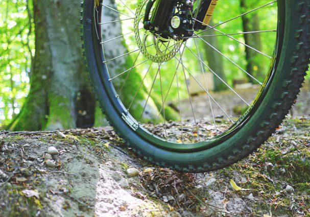 Tourist-Info-Punt-Het-Reestdal_CT_bekijken-doen_fietsen_mountainbiken_MTB-route-Zuidwolde-west-1